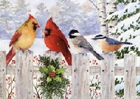 Christmas Cards with Birds #2 - USA