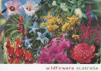 Flower PC Swap