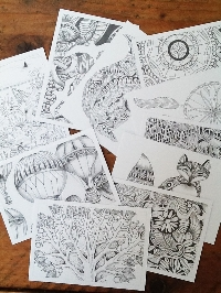 Send 3 UNCOLOURED adult colouring PCs in an Envie