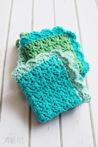 Dishcloth with a Border - March 2017