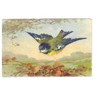 Put A Bird On It Postcard Swap - US