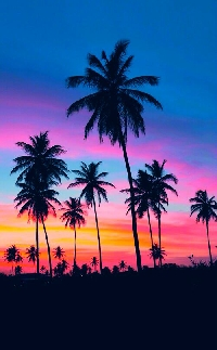 Pinterest: Sunsets