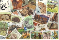 WIYM: Postcard Covered in Postage Stamps