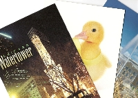 PH: Postcards - 3 Specific Types #1