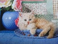 Domestic cat or kitten postcard swap