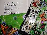 BL ~ Butterfly poem