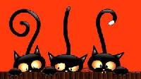 WIYM: Halloween Countdown #5