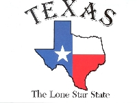 Pinterest 50 state swap #3 Texas