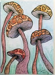 Mushroom ATC