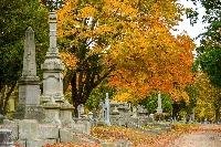 Cemetery Photography Swap #3