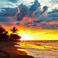 ESG: My Favorite Vacation