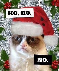 Grumpy Cat's Worst Christmas PL