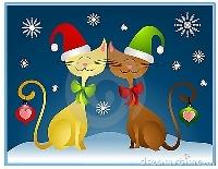 Christmas Gifts 1 of 12 - Sender's Choice USA