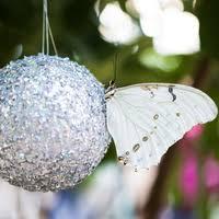 BL ~ Winter Butterfly Deco Swap #1