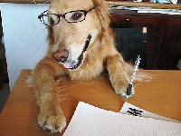 Tell Me About Your Pets - Letter Writing Swap - US