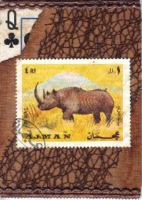 WIYM: APC Animal Series-Rhino