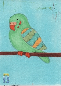 MAS: Bird