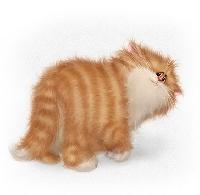 ATP - Cat Clip Art