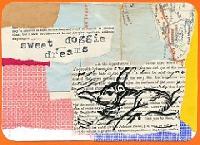 HCSI: Dog postcard