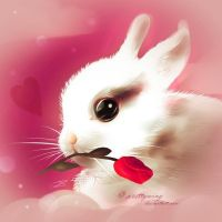 Cute animal Valentine's Day profile decoration