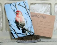 USAPC: Handcrafted Post Card with a Bird