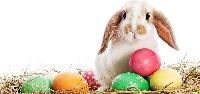 Spring/Easter Dollar Store Scavenger Hunt