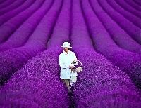 My Favorite Color is Purple