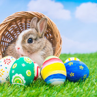 Easter Swap