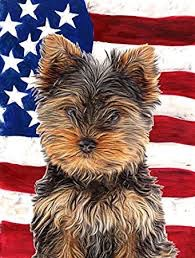 Flag atc's Amerika #3