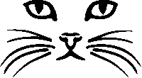 Cat Greeting Card USA Newbie Frdly