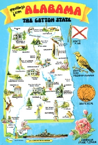 Map Card Postcard