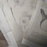 Vintage papers pack swap