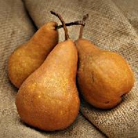 ATC with Pears (USA)