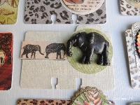 African Safari MemoryDex
