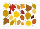Fall Sticker Fun!!