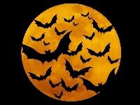 BTH Magical JJ supplies Samhain or Halloween