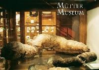 MUSEUM POSTCARD SWAP - OCTOBER