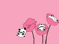 Kawaii Panda!!