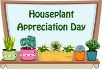 Houseplant Appreciation Day Profile decorations