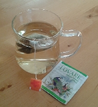 Tea Lovers' January - 20 bags of tea