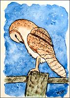 Watercolor ATC --- Owl
