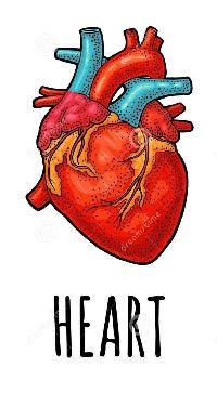 Heart themed postcard swap ❤️🧡💛💚💙💜