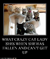 KKL@:CRAZY CAT LADY PC
