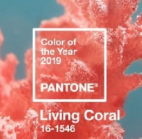 Flipbooks in colour #8: CORAL