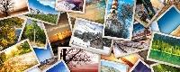 QUICK 5 Postcards in an Envie swap #8 INTL