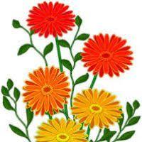 🌻 flower lovers 🌻