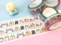 Kawaii Washi Swap #1