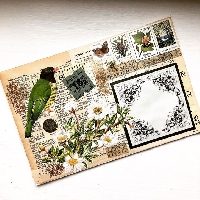 MFF:  Bird Mail Art + Bird Ephemera
