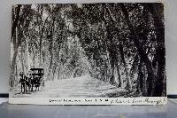 WIYM: Black & White Postcard Swap #3-USA