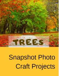 SPCP: Trees
